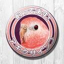 TOMO YAMASHITA DESIGN STUDIO. / 飼ってます缶バッジ  「 アキクサインコ 」 / 195A0255 ネコポス 対応可能 ( BIRDMORE バードモア 鳥用品 鳥グッズ 雑貨 グッズ 鳥 とり トリ インコ プレゼント )