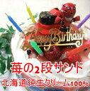 旧作:特命戦隊ゴーバスターズ2012/4種類のケーキからお選...