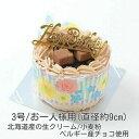 生チョコ飾り/ショコラデコレーションケーキ3号(直径約9cm)バースデーケーキ3号/お誕生日ケーキ