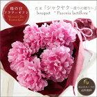 母の日プレゼント・花束「シャクヤク〜香りの便り〜」