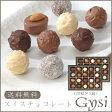 スイスチョコレート Gysi(20粒×2箱)[送料無料]【楽ギフ_のし宛書】【内祝い・出産内祝い・結婚内祝い・快気祝い お返し にも!スイーツ】