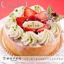 【クリスマスケーキ予
