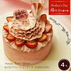 母の日デコレーションケーキ「CARNATION」