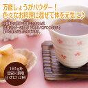 生姜 パウダー しょうが パウダー 国産 送料無料 生姜 粉末 100g 送料無料 生姜湯 しょうがゆ 無添加 2