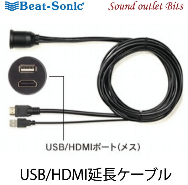 カーナビ・カーエレクトロニクス, その他 Beat-SonicUSB9 USBHDMI