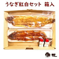 魚三・うなぎ紅白セット/ギフト箱入