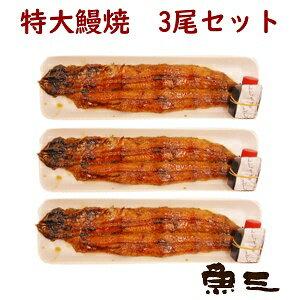 焼き立て発送『国産活け鰻の蒲焼3尾入りエコパック』