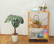 80cmスプリットフィロプラント(グリーン・造花樹木・人工観葉植物)