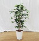 あっさりしたベンジャミン120cm(造花 インテリア おしゃれ 室内 人工 観葉植物 樹木 装飾 作り物 フェイク グリーン プランツ)