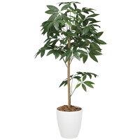 造花アート・観葉植物パキラトピアリー1.2の全体画像