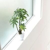 造花アート・観葉植物パキラポットLのアップ画像