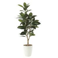 造花アート・観葉植物ゴムの木1.25の全体画像