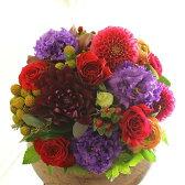 アレンジメントフラワー Round Basket(赤系)※デザイナーが手がけるお洒落な一品。お見舞いや快気祝いなど、退院後のお祝いに関する贈り物に【送料・メッセージカード無料】【あす楽】