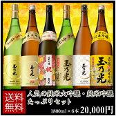 日本酒 純米大吟醸・純米吟醸たっぷりセット 1800ml×6本 BTNY-6B ギフトお中元夏ボーナス
