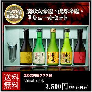 純米大吟醸・純米吟醸・リキュール 300ml×5本セット TNL-5