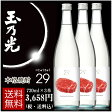 本格焼酎 29(にじゅうきゅう) 720ml×3本 送料無料