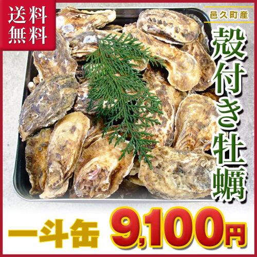 ■ 岡山県 邑久産 曙牡蠣 | 一斗缶100個(10kg)以上■送料無料!市場、最安値...