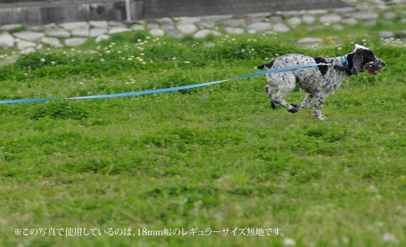 ビーエルシーTheBlackLabCompany『小型犬用ロングリード』
