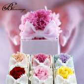 花プレゼントギフトプリザーブドフラワーカーネーションローズプチギフトリボンパールボックス【ラッキーシール対応】バラとカーネーションから選べる6色