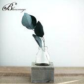 花瓶花器ヴィエイユウッド&ボトル1ボトル