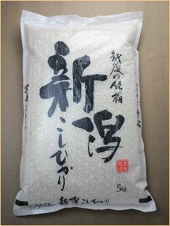 24 annual Koshihikari Niigata Koshihikari 24 year production 10kg (5 × 2 キロ bag = 10 kg) H Koshihikari Gift