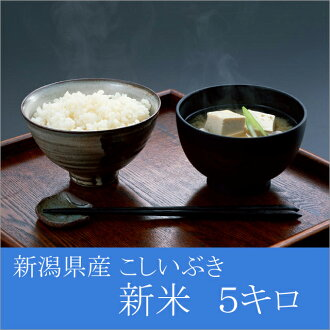 Strainer Ibuki from the Niigata 27, 5 kg 5 kg H, Niigata Prefecture produced gifts