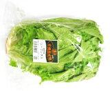 【フルヤの安心野菜】【冷蔵】有機リーフレタス 1株