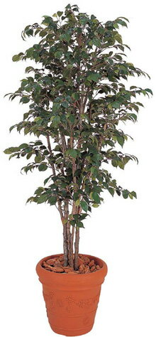造花・人工観葉植物, 人工観葉植物  1.8mGD31L
