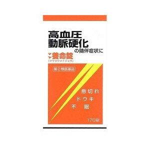 【第(2)類医薬品】【20個セット】 マヤ養命錠 170錠×20個セット 【正規品】