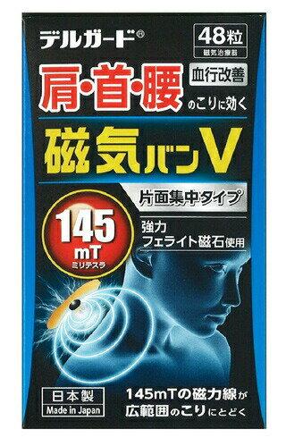 治療機器, 磁気治療器  V 48
