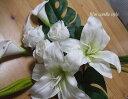 カサブランカとバラの花束CT触媒・母の日・ブライダル・結婚式の花ブーケ・花束・枯れない花母の日・誕生日・ユリ・大きな花カサブランカ・カラー・バラ・モンステラ
