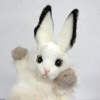 ハンサ【パペット】シロウサギ[7156]グッズハンドパペットぬいぐるみhansaHANSAリアルな動物のぬいぐるみ