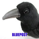 [ハンサ][6266]カラスhansa crow CROW ぬいぐるみ 鴉 からす