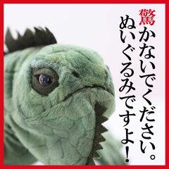 【ワイルド ライフ アニマルズ】 イグアナ[リアル 動物園 アニマル インテリア]【あす楽対応…