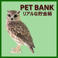 [鳥雑貨]【PETBANK-ペットバンク-】【1099】【ロングイヤードオウル】[LONGEAREDOWL]まるで本物の動物みたい!貯金箱ですがインテリアとしても♪