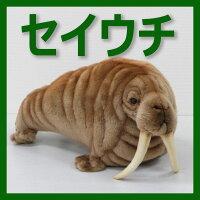 [ハンサ]セイウチ[5327]HANSAのリアルな動物ぬいぐるみです。