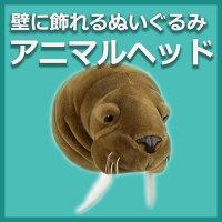 [ANIMALHEAD][BI016]アニマルヘッド【Walrus(セイウチ)】【あす楽対応_関東】