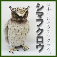 [ハンサ]シマフクロウ[6776]HANSAのリアルな動物ぬいぐるみです。