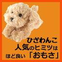 サンレモン ひざわんこトイプードル【ベージュ】[P-3042]犬 いぬ イヌ ワンちゃん ワンコ ひ