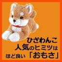 サンレモン ひざわんこ柴犬【ベージュ】[P-3052]