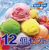 【アイスクリーム】ブルーシールギフトセット12(送料込)