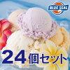 アイスクリーム【送料込み】沖縄の「ブルーシールギフトセット24」