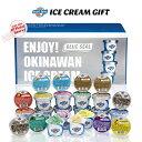 ブルーシール アイス 詰め合わせ ギフト 24個入り 送料無料 沖縄 お取り寄せ お土産 内祝い