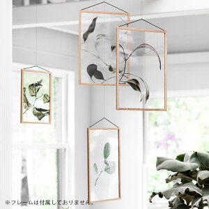 PaperCollective/FloatingLeaves03A5(Clear)