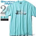 【大きいサイズ】【メンズ】HAWAIIAN STYLE(ハワイアンスタイル/LOCAL MOTION ローカルモーション) プリント半袖Tシャツ【USA直輸入】mts-5424