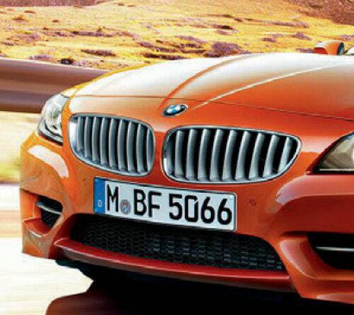 フロント バンパー グリル 【BMW純正】 左右セット BMW E89 Z4 35is
