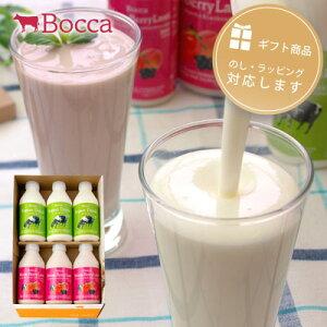 飲むヨーグルト&ラッシーセット(3)