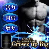 GrowUpBIG男性用サプリシトルリン・アルギニン・トンカットアリ・マカ90粒