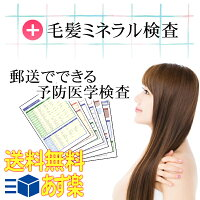 【あす楽】スグに始められる身近な予防ケア♪毛髪ミネラル検査【送料無料】[P]【RCP】