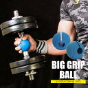 ビッググリップボール(ペア)【BODYMAKER ボディメーカー】懸垂 背筋 握力 プルアップ グリップ ボール 広背筋 前腕 屈筋群 握力 リフトトレーニング 逆プッシュアップ